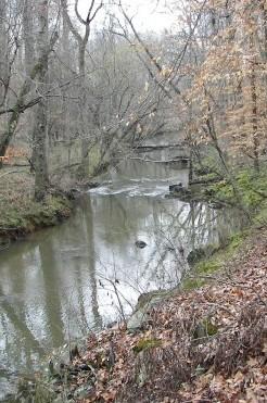 Dry Creek, Chatham, NC